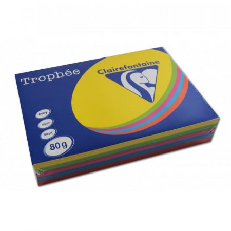 REPRO A4 1704 80G SOL/MENT/CARD/TURQ/ORA